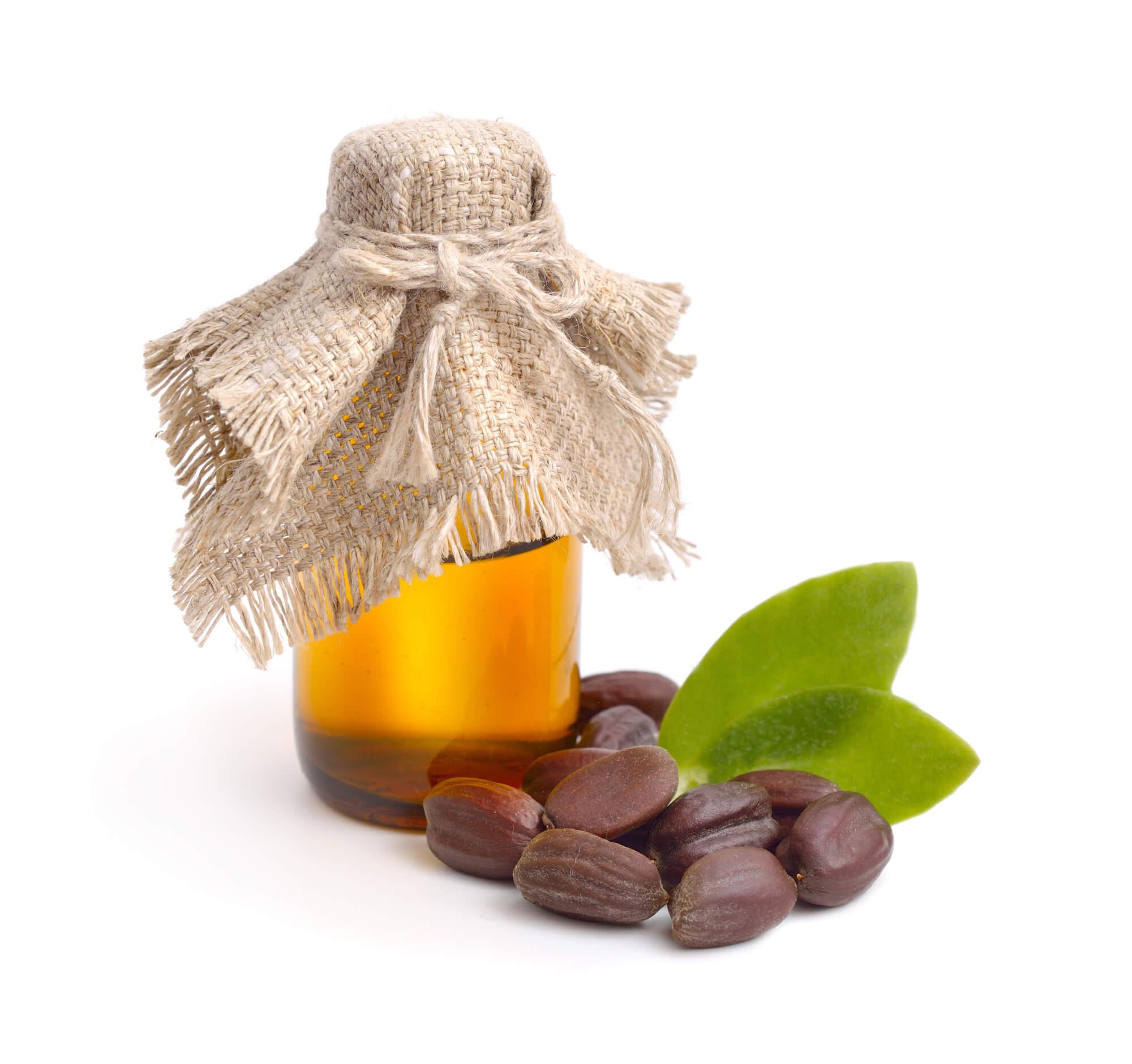 A bottle of jojoba oil next to jojoba seeds